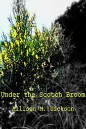 Scotch_Broom_Cover